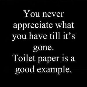 toilet paper (1)